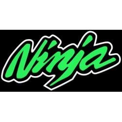 Kawasaki Ninja Lime XL