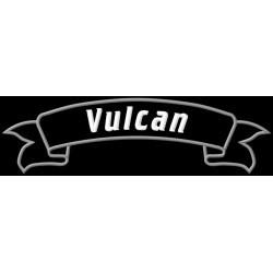 Kawasaki Vulcan Rocker